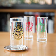 Harry Potter Glass Set